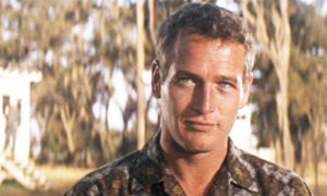 paul-newman-hot-young